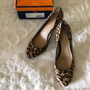 Leopard Pumps in a size 9.5 M by Arturo Chiang